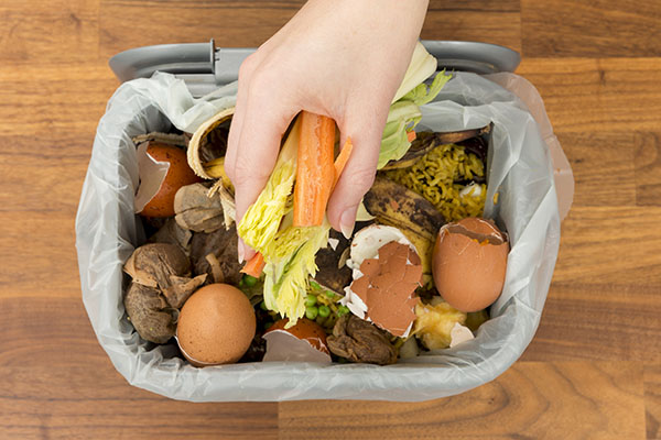 Diese Lebensmittel landen am häufigsten im Müll