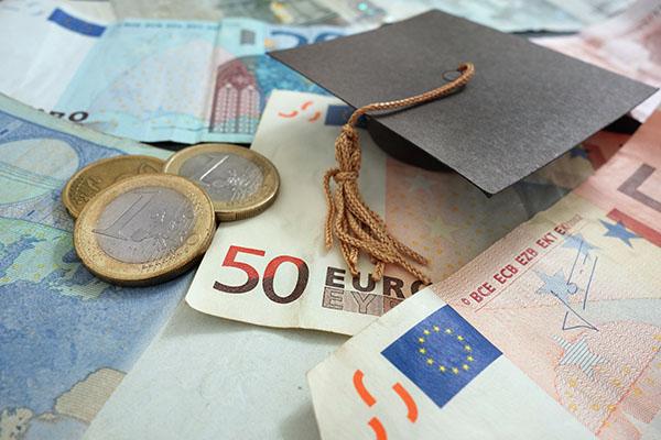 Der Student in Euro und Cent